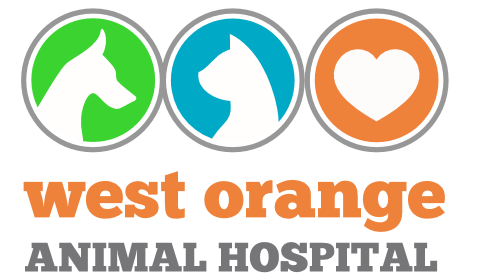 West Orange Animal Hospital
