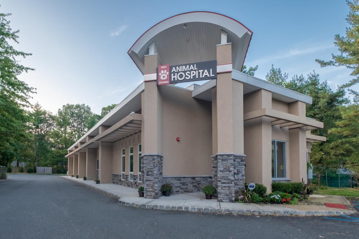 Exterior View Of Hospital